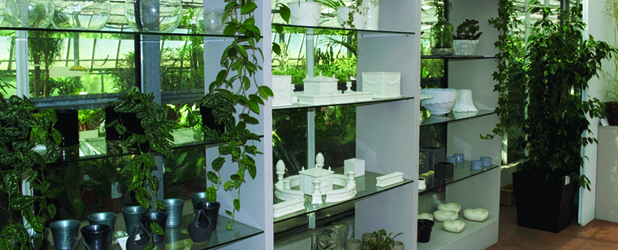 Piante Arredo Casa : Arredo giardino decorazioni venezia gardin piante
